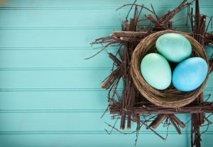 Dyed Easter eggs in a nest on a turquoise blue wood panel